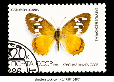07.24.2019 Divnoe Stavropol Territory Russia USSR postage stamp 1986 Series - USSR Red Book, Satir Bischoff, Satyrus Bischoffi, butterfly on a white background