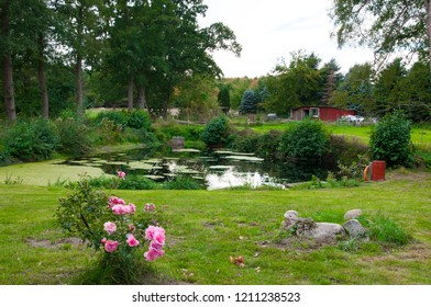 09.30.2018, Germany: A small pond in autumn.