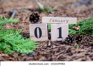 1 January. Date on wooden cube calendar in the forest with cones. New year concept. Start of the new life.
