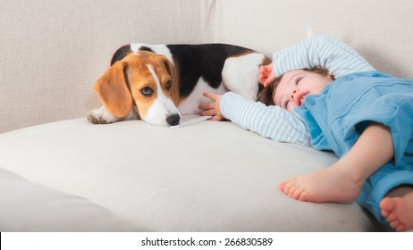 1 year old baby boy playing with his beagle pet dog.