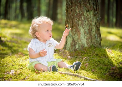 1 year old baby examining butterfly sitting on his hand