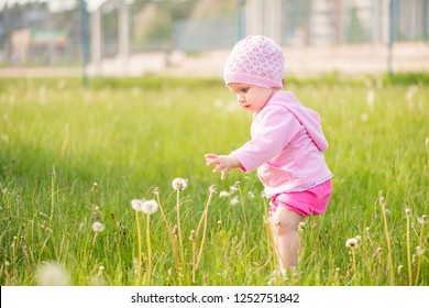 1 year old baby girl picking up dandelions