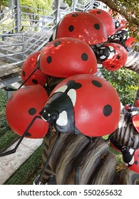 10 December 2016 Pattaya. Thailand. Park Nong Nooch. Giant beetles crawling on the branches of tropical plants.
