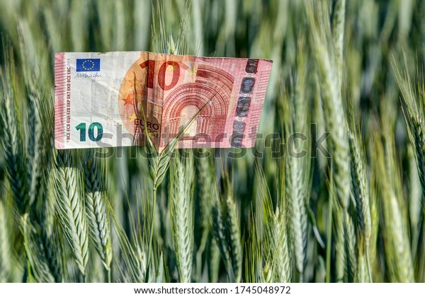 A 10 euro note is in a wheat field. What is our society, the work of farmers worth. What are we willing to pay for groceries?