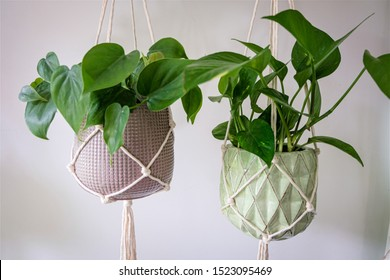 A 100 percent cotton macrame plant hanger that is hand made displayed on a white wall.
