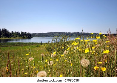 108-mile Ranch by 108 Lake in one of the communities of historic ranches and lakes in British Columbia