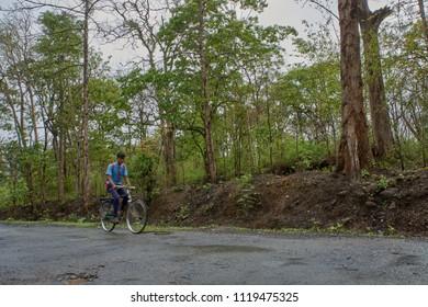 11-june-2017-student on bicycle  in dandeli forest road at near yellapur karnataka india Asia