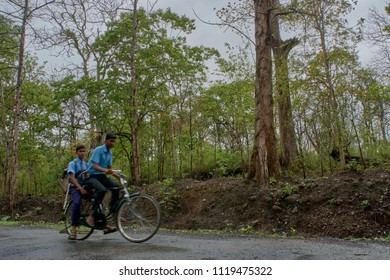 11-june-2017-students on bicycle  in dandeli forest road at near yellapur karnataka india Asia