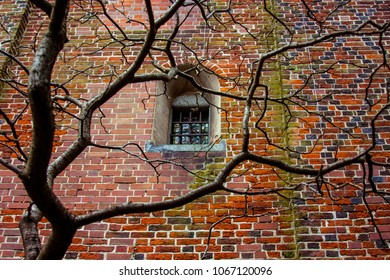 12.03.2018. Malbork, Poland. Small window behind bars in the wall of the old Malbork castle with the tree on the foreground