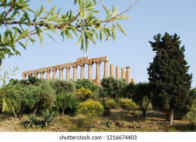 12th of May 2010 - Scen from the Valley of Temples with view past subtgropical vegetation to the Temple of Juno, Agrigento, Italy