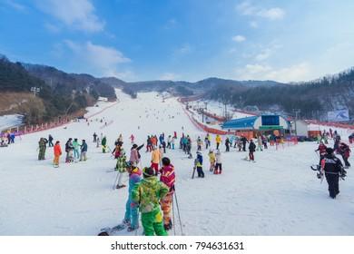 14 January 2018:Tourists enjoy to play ski and snowboard at Yangji pine ski resort in Yongin city Gyeonggi-do South korea on holiday.