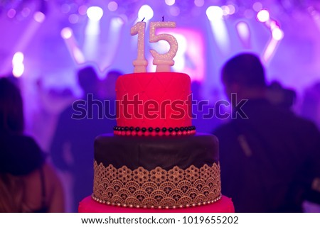 15 Year Old Party Cake