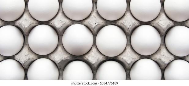 18 white eggs in a carton