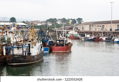 19 September 2014 Trawlers of various sizes berthed in the safe shelter of busy Kilkeel Harbour in County Down Northern Ireland