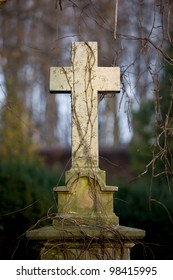 19th century vintage gravestone with simple cross entangled with creepers at Warsaw cemetery, Poland