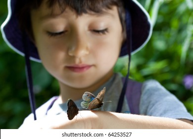 2 Butterfly's on kid's hand