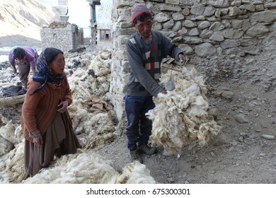 2 July 2017, Tsomoriri village .Ladahk,India.Ladakhi lady and middleman are selling and measuring fresh wool right after sheep shearing.