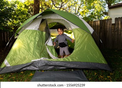 2 Little Boys Play Together in their Backyard in a Green Camping Tent