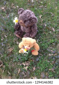 2 teddy bears stopping to smell the flowers