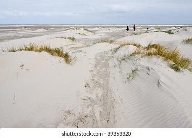 2 Women walking in the sand dunes with beach grass near the sea