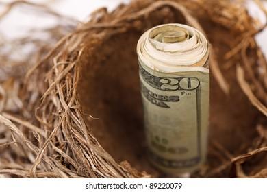$20 bill representing your retirement nest egg.