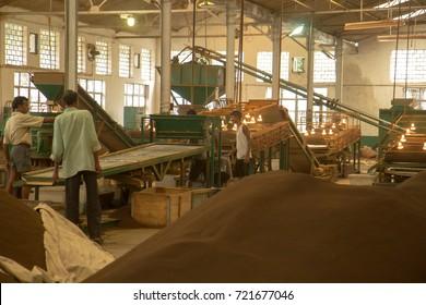 2013 06, India, Assam: Inside a tea factory