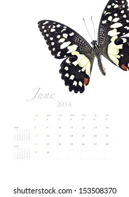 2014 calendar , insect bug beetle design on white background