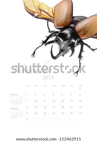 2014 Calendar Insect Bug Beetle Design Stock Photo Edit Now