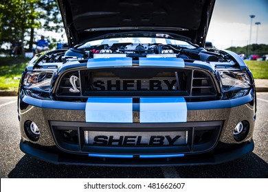 2014 Ford Mustang Shelby Cobra GT500 at Summer Thunder in Purcellville Virgina