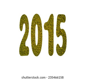 2015 number pattern made from the duckweeds. isolated on a white background