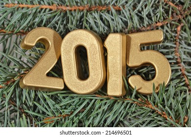 2015 year golden figures on a spruce branch