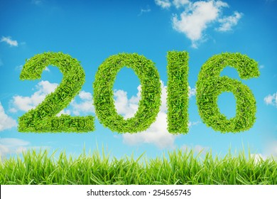 2016 year made from green leaves on blue sky background