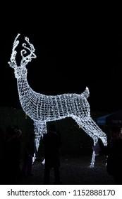 2016-December-16: People enjoying christmas light maze at Enchant Light Maze at Olympic Village Vancouver British Columbia Canada
