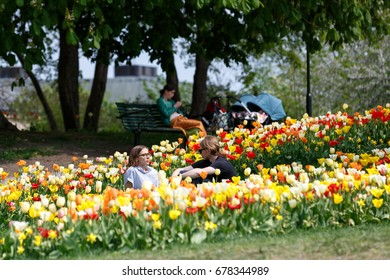 2017, Stockholm city, recreation in the middle of tulips