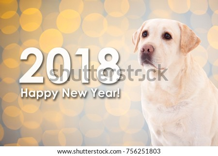 2018 New Year Concept Cute Dog Stock Photo Edit Now 756251803