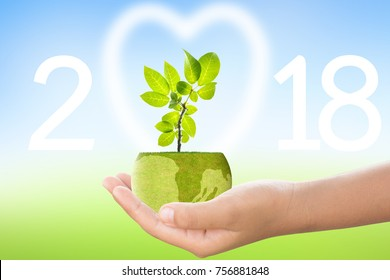 2018 Year of the Environment