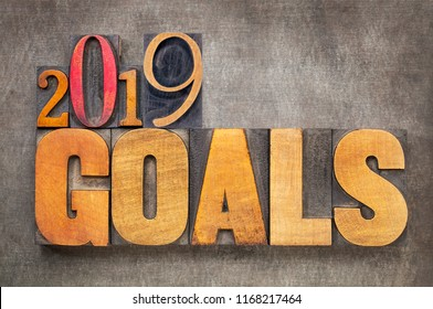 2019 goals - New Year resolution concept - word abstract in vintage letterpress wood type blocks against grunge metal background