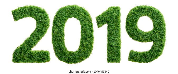 2019 is a good year for growth in environmental business. Grass growing in the shape of year 2019.