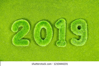 2019 new year grassed concept  on green background