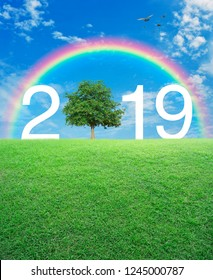 2019 with tree on green grass field over rainbow, birds and blue sky with white clouds, Happy new year 2019 ecological concept