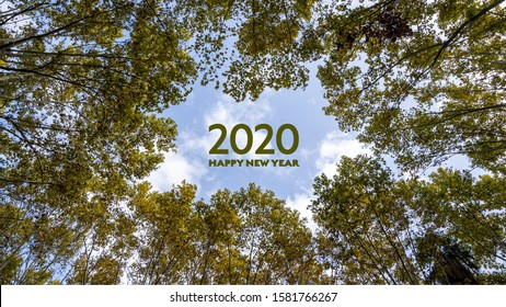 2020 happy new year written in the sky in the middle of trees. Green environment or eco friendly best wishes concept. Banner for postcards, website, diary or social media front pages