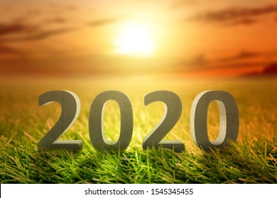 2020 on the green grass with a sunset sky background. Happy New Year 2020