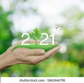 2021 white text with growing tree on green grass field in man hands over blur green tree, Happy new year 2021 ecological cover concept