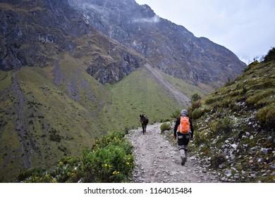 20-April-2018, Salkantay Mountain, Peru, South America. Salkantay Trek in Peru, the road to Machu Picchu, is one of the most famous treks in Cusco.