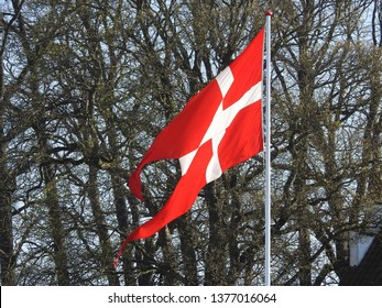 21st of April 2019 - Scene from Danish city with swallow-tailed flag against naked branches, Aalborg, Denmark