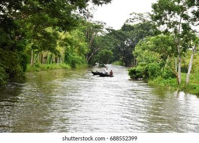 21st July, 2017, 11:00 AM, Vimruli Bazar Area, Barishal Division, Bangladesh - Natural beauty of Bangladesh, Boatmen are sailing on local river