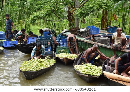 21st July, 2017, 11:00 AM, Vimruli Bazar Area, Barishal Division, Bangladesh - Natural beauty of Bangladesh, Boatmen are sailing on local river