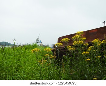 21st of July 2018 - Scene from a Russian riverside with view past yellow flowers and a rusty object to a vessel, Ust-Luga, Russia