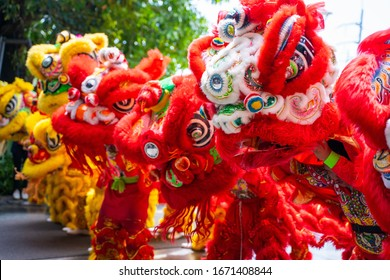 23 January 2020-Phuket::lion dance show for chinese new year,thailand