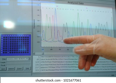 23/5000 computer monitor shows DNA sequencing